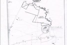 Животноводческий комплекс-4511 кв. м. на уч.40 га..