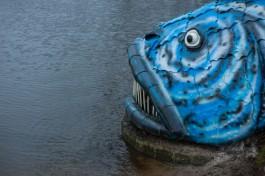 Губернатор о гигантской рыбе на Нижнем озере: Это кошмар на улице Вязов