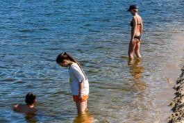 Вода на морском побережье Калининградской области прогрелась до +16°С