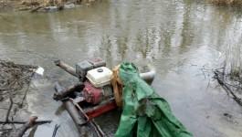 В 2017 году калининградские полицейские задержали почти 700 чёрных копателей янтаря