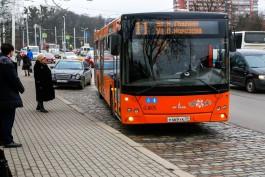 В Калининграде ограничивают число поездок в общественном транспорте по льготному проездному