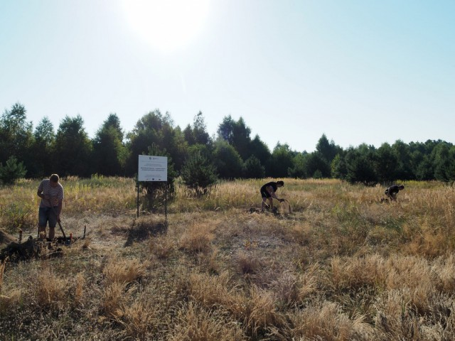 Археологи БФУ имени Канта обнаружили под Калининградом следы поселения бронзового века