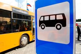 Проезд для автолюбителей в общественном транспорте Калининграда на день сделают бесплатным