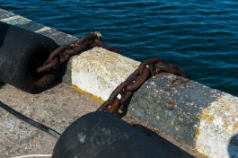 В порту Польши перехватили две тонны колумбийского кокаина