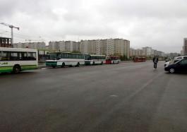 Кто контролирует расписание автобусов на Сельме?