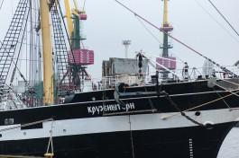 В Калининграде проводили барки «Седов» и «Крузенштерн» в кругосветное плавание