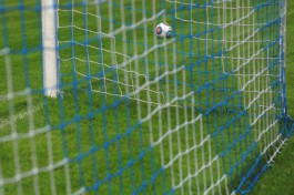 Перед Евро-2020 сборная России сыграет товарищеский матч с Польшей
