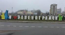 На въезде в Зеленоградск установили разноцветные фигуры котов