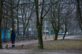 В Калининграде зафиксировали рекордную температуру для 15 января