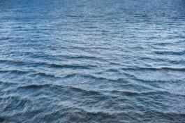 СМИ: Клайпедский порт спускал в Куршский залив сточные воды с ртутью