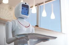 В Польше создали агентство по трудоустройству роботов