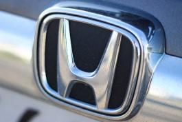 Жительница области засудила управляющую компанию за упавшую на машину черёмуху