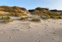 На пляже на Куршской косе нашли тело 40-летнего калининградца
