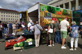Власти планируют искать новые места для проведения сельхозярмарок в Калининграде