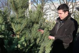 Алиханов планирует во время новогодних каникул «поездить по области»