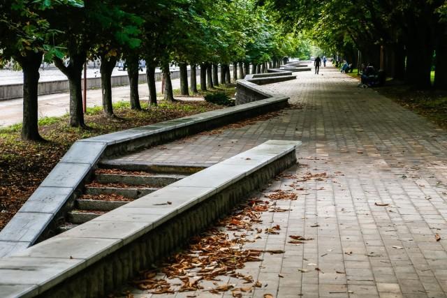 В выходные в Калининградской области потеплеет до +22°С