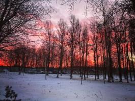 «Небо в красках»: яркий восход солнца в фотографиях калининградцев