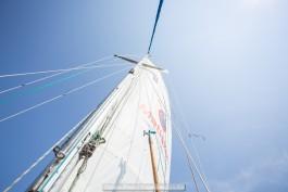 В Калининградском заливе пройдёт регата в честь 70-летия парусного спорта в области
