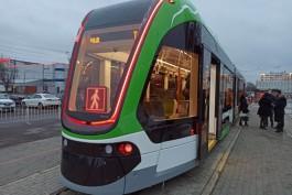 «Самый современный в мире»: в Калининграде показали новый трамвай «Корсар»