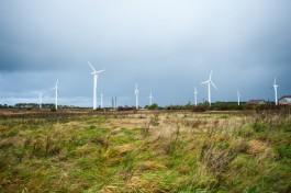 Штормовой ветер на 20% снизил стоимость электричества в Прибалтике