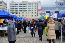 Власти предложили калининградцам выбрать новое место для проведения ярмарки