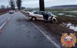 На трассе Калининград — Крылово в ДТП погиб 55-летний водитель «Рено»