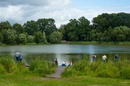 К благоустройству Летнего озера в Калининграде планируют приступить в августе