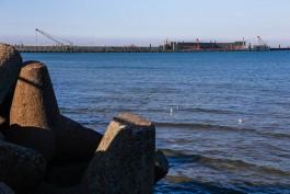 На обследование недостроенного порта в Пионерском потратят 14 млн рублей