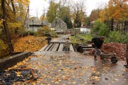 В калининградском зоопарке начался ремонт третьего исторического моста