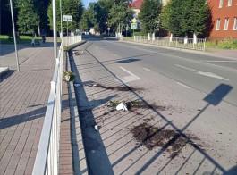 В центре Балтийска мужчина разбил семь вазонов с цветами