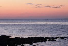 «Коммерсантъ»: Минфин не согласовал строительство калининградских паромов
