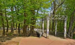 В «Шервудском лесу» в Калининграде появится Семейный сквер