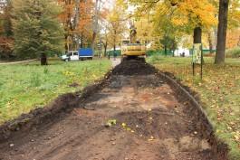 В зоопарке Калининграда начали ремонтировать дорожки возле вольера тундровых волков