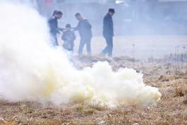 В Зеленоградске рядом с Куршской косой загорелся лесной массив