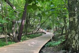 «Дорожки вдоль кладбища»: как выглядит городской парк Зеленоградска после благоустройства