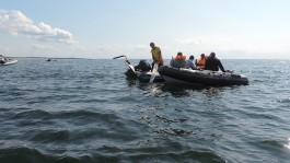 В Балтийском море задержали аквалангистов за нелегальную добычу янтаря