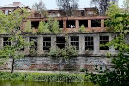 «Развал в системе»: почему аварийные здания на берегу Нижнего озера в Калининграде стали опасными