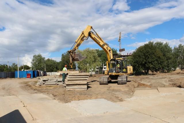 Для строительства детского сада в Калининграде разрешили вырубить 324 дерева и 222 кустарника