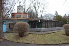 В калининградском зоопарке после ремонта открывается террариум