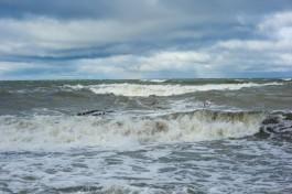 В выходные в Калининградской области ожидается усиление ветра