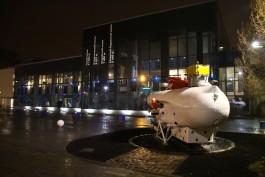 В Музей Мирового океана в Калининграде передадут кости оленя возрастом 45 тысяч лет
