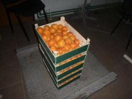 В Калининградской области уничтожили почти 11 тонн санкционных овощей и фруктов