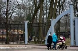 В Калининградской области хотят выплачивать материнский капитал за первого ребёнка