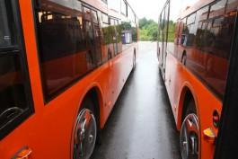 Власти Калининграда: Внедрение электронной системы проезда продлили до 20 июля