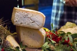 В 2021 году в Калининградской области расширят производство сыра
