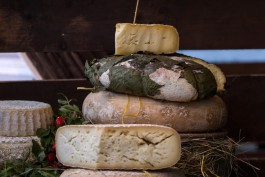 Власти: Калининградская область обеспечивает себя сыром на 75%