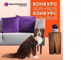 Конкурс от «Ростелекома»: получайте ценные призы за фото и видео домашних любимцев