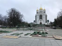 На площади Победы в Калининграде начали устанавливать новогоднюю ёлку
