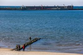 «Росморпорт» повысил до 82 млн рублей цену контракта на корректировку проекта порта в Пионерском