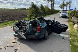 В Гурьевском округе дерево упало на автомобиль: пострадали водитель и восьмилетний ребёнок
